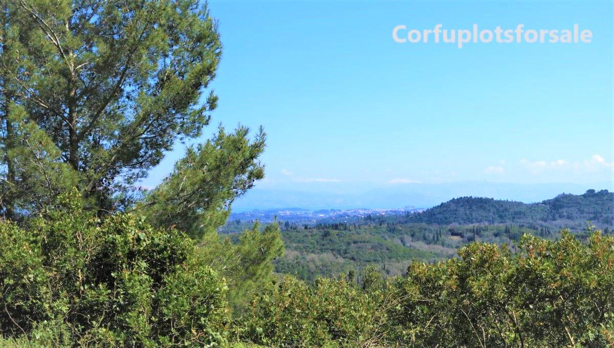 16.500 Sq.m plot in Pelekas,Corfu, at an attractive price
