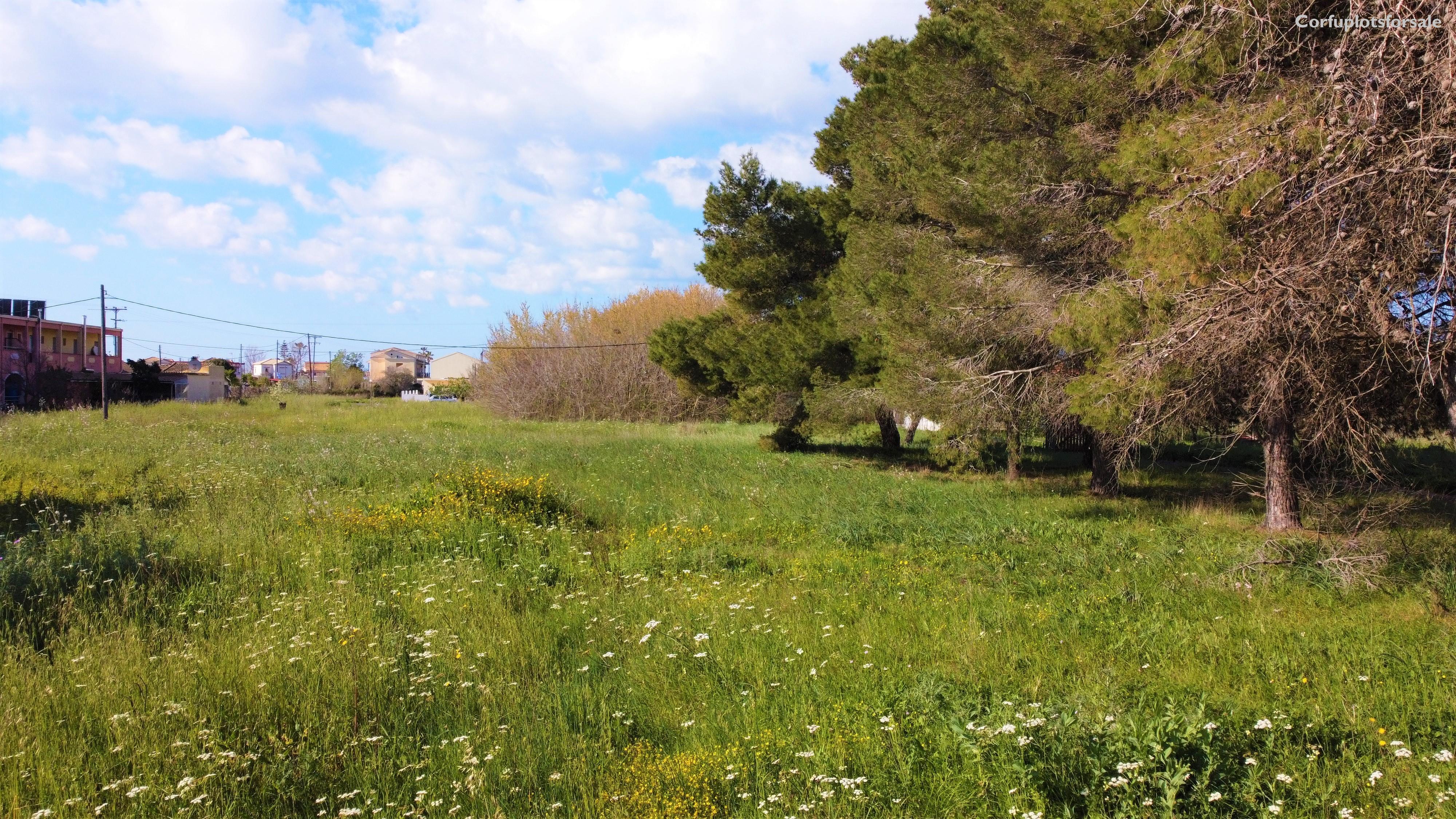 Bargain plot in the settlement of Agios Georgios